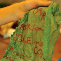 manuscritos_desembrulho_verde_thumb